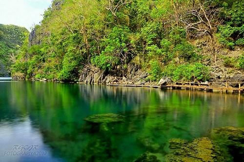 island jungle lagoon philippines - 6230087168