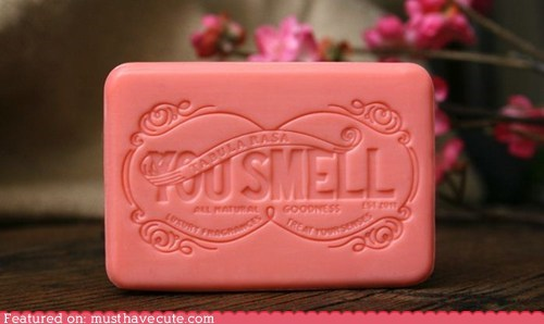 advice,rude,soap,you smell