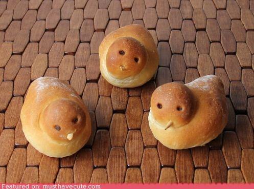 birds bread buns epicute rolls - 6230820096