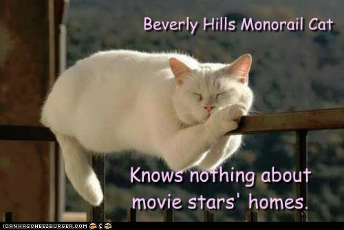 Beverly Hills Monorail Cat Knows nothing about movie stars' homes.