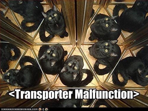basement cat,borked,broken,classic,classics,clone,malfunction,teleporter,transporter