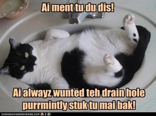 Ai alwayz wunted teh drain hole purrmintly stuk tu mai bak! Ai ment tu du dis!