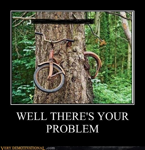 bike,hilarious,problem,tree