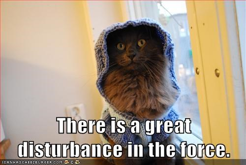 ben kenobi Cats Jedi lolcats Movie movies obi-wan kenobi reference sci fi star wars the force - 6232756224