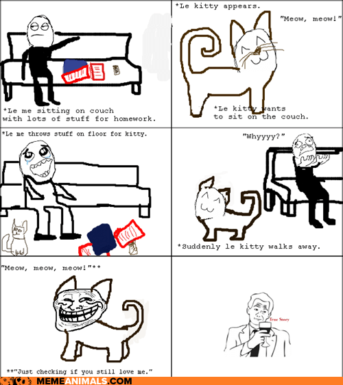 annoying,Cats,multipanel,pets,Rage Comics,trolling,true story