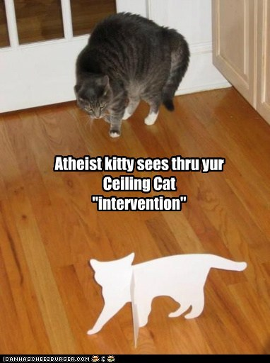 atheist,ceiling cat,doubt,intervention,pretend,suspect,white