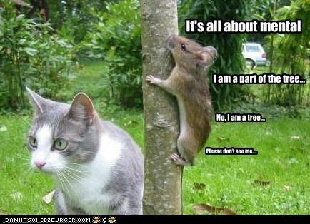 camouflage hide mouse Predator pretend prey quiet still thought tree - 6232975616