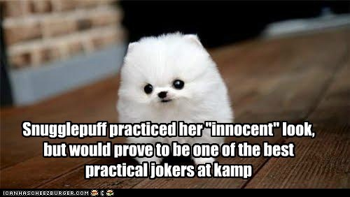 "Snugglepuff practiced her ""innocent"" look, but would prove to be one of the best practical jokers at kamp"