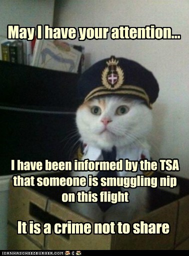 May I have your attention... I have been informed by the TSA that someone is smuggling nip on this flight It is a crime not to share