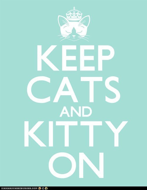 best of the week Cats keep calm keep calm and carry on posters sayings - 6233365760