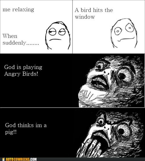 angry birds,apps,god-thinks-im-a-pig,rage comic,relaxing