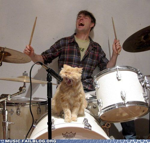 cat,drums,g rated,growl,lyrics,Music FAILS,yowl