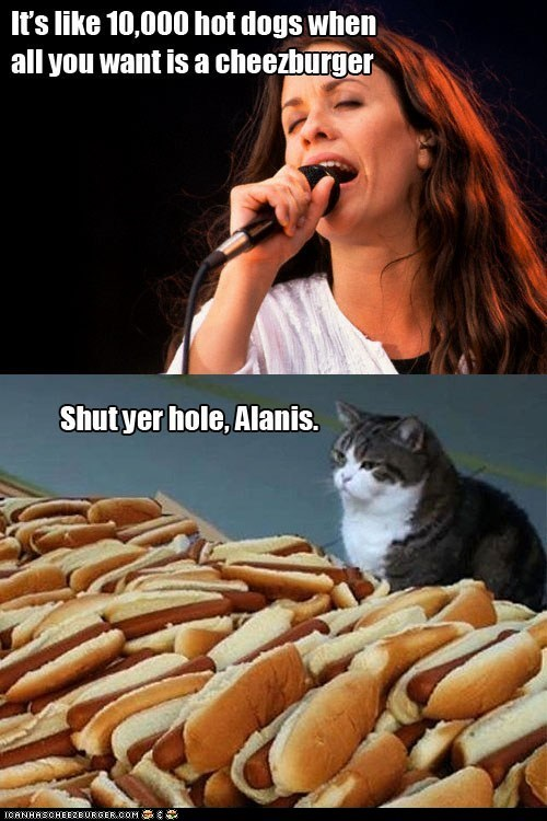 alanis morissette,Cats,cheezburgers,food,hotdogs,ironic,lyrics,maru,multipanel,Music,shut up