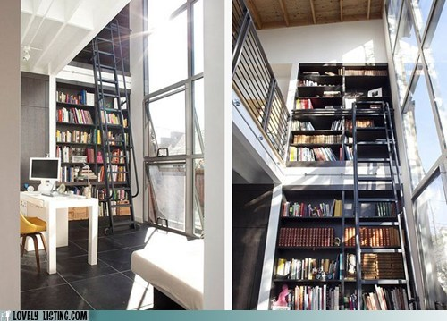 bookcase,ladder,shelves,sunlight