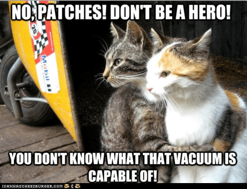 Cats dont-be-a-hero heroes Memes restraining restraining cat vacuum cleaner vacuums - 6234472960
