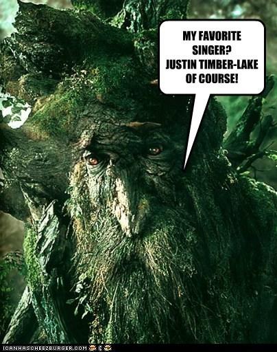 MY FAVORITE SINGER? JUSTIN TIMBER-LAKE OF COURSE!