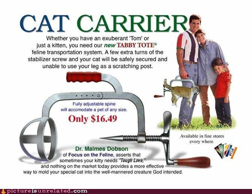 Ad best of week carrier cat classic wtf - 6234704128