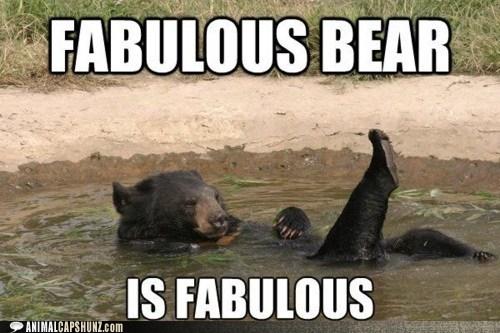 bath bathing bear bears best of the week fabulous fierce Hall of Fame lake toes - 6234880000