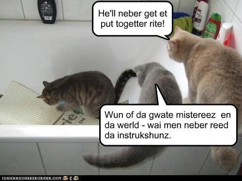 Cheezburger Image 6235065856