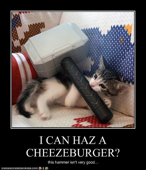 Cheezburger Image 6235142144