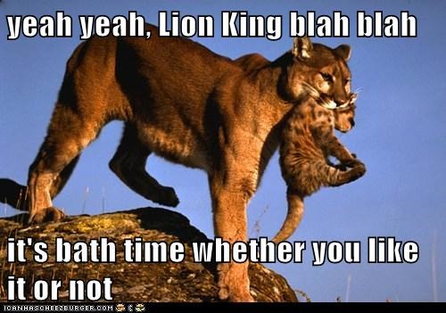 baby,bath,bath time,baths,blah blah,cub,kids,lion king,lions,whining