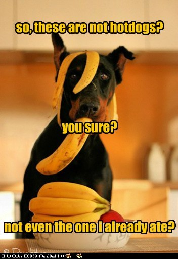 banana,doberman pinscher,dogs,hotdog