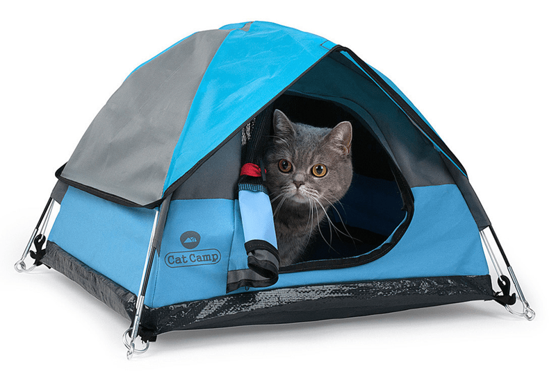 product tiny hideaway tent Cats - 6236421