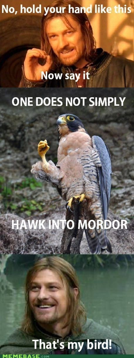 hawk Lord of the Rings mordor One Does Not Sim one does not simply - 6236680192
