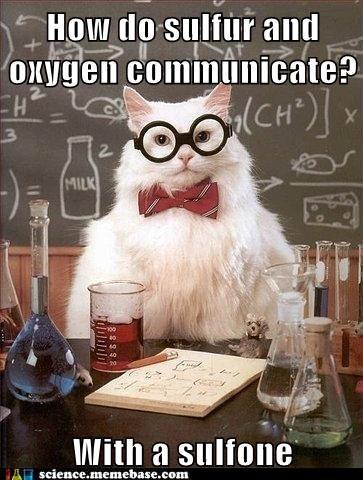 Chemistry,chemistry cat,oxygen,sulfer,sulfone