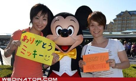 disney funny wedding photos gay marriage Japan tokyo disneyland - 6237153792