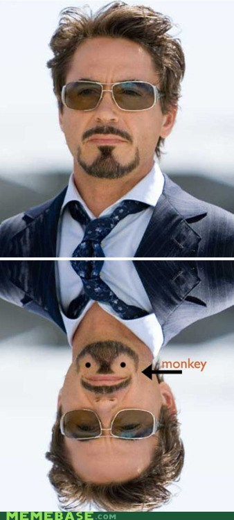 beard,Memes,monkey,robert downey jr,upside down