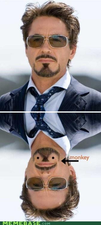 beard Memes monkey robert downey jr upside down - 6237336576