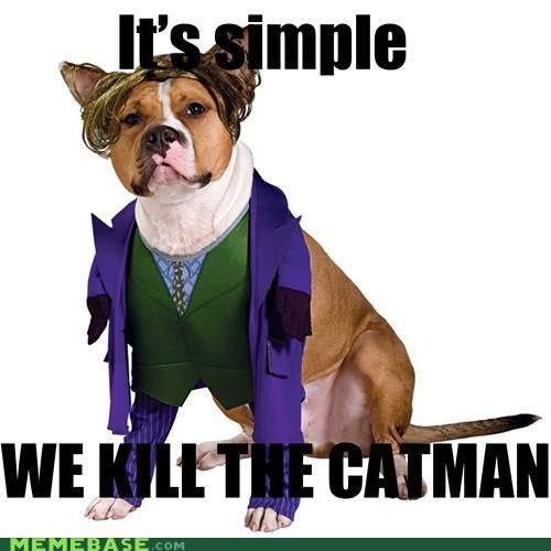 batman,cat,dogs,joker,Memes