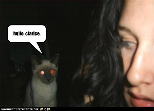 cannibal Cats Clarice creepy eat hannibal lector lolcats meat scary silence of the lambs