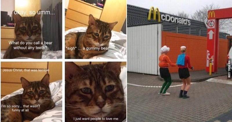 relatable memes dog memes random memes funny memes doggo memes too relatable stupid memes relatable tweets pointless memes funny tweets funny twitter cat memes - 6238213