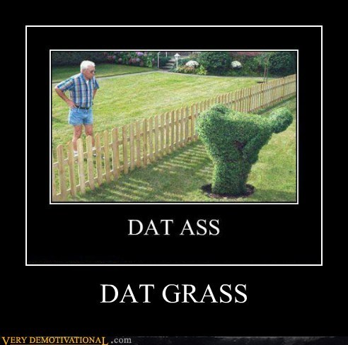 booty bush grass hilarious
