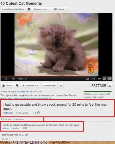 cute kitten manly youtube - 6238714368
