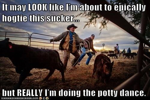 cattle Cowboys political pictures - 6239013632