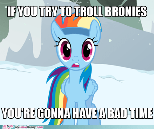 bad time Bronies love and tolerate meme rainbow dash - 6239124224