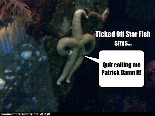 Quit calling me Patrick Damn It! Ticked Off Star Fish says...