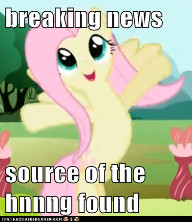 breaking news  source of the hnnng found