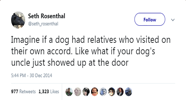 tweet about your dog's uncle coming to visit
