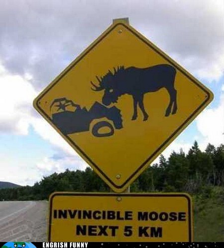 Canada engrish funny g rated Hall of Fame invincible moose moose road sign