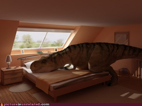 dinosaur dogs pet t rex wtf - 6240569600