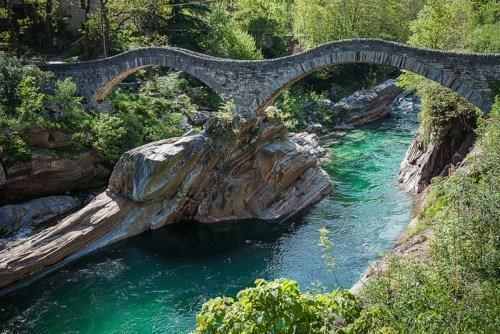 bridge Forest river Switzerland - 6240616192