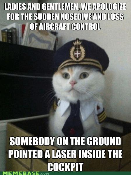 cat laser Memes pilot pointer - 6240819456