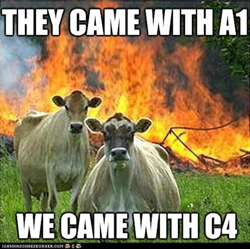 a1,c4,cows,evil,evil cows,explosions,fires,Memes,puns,revenge