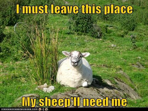 alien leave my people need me poochie sheep sheeple - 6241152512