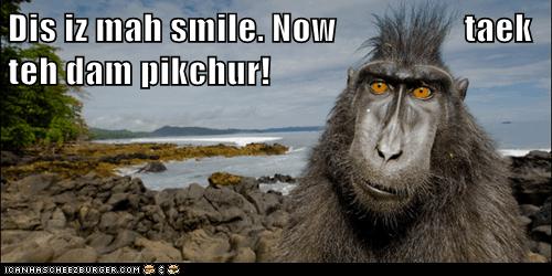 annoyed happy face impatient monkey smile - 6241420032