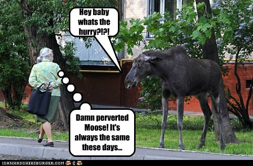 Hey baby whats the hurry?!?! Damn perverted Moose! It's always the same these days...